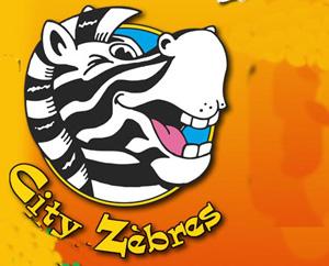 City Zebres La Roche Sur Yon Childrens Play Centre