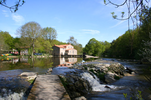 Moulin du Poupet, weir on the river Sevre Nantaise